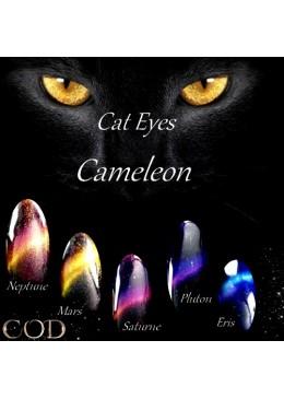 Cat Eyes caméléon