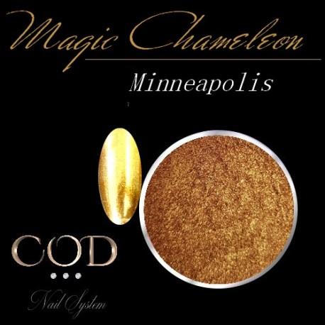 Pigment Magic Chameleon Minneapolis