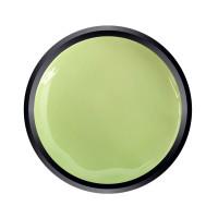 Paint Gel Green Pistachio