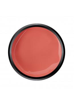 Paint Gel Apricot