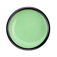 Paint Gel Almond Green
