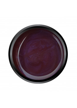 Gel couleur Dark Plum