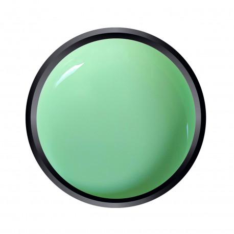 Gel couleur Light Green